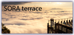 SORA terrace